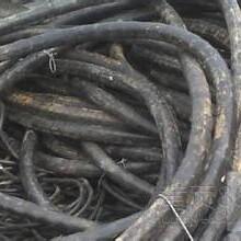 荣县收购电线电缆图片